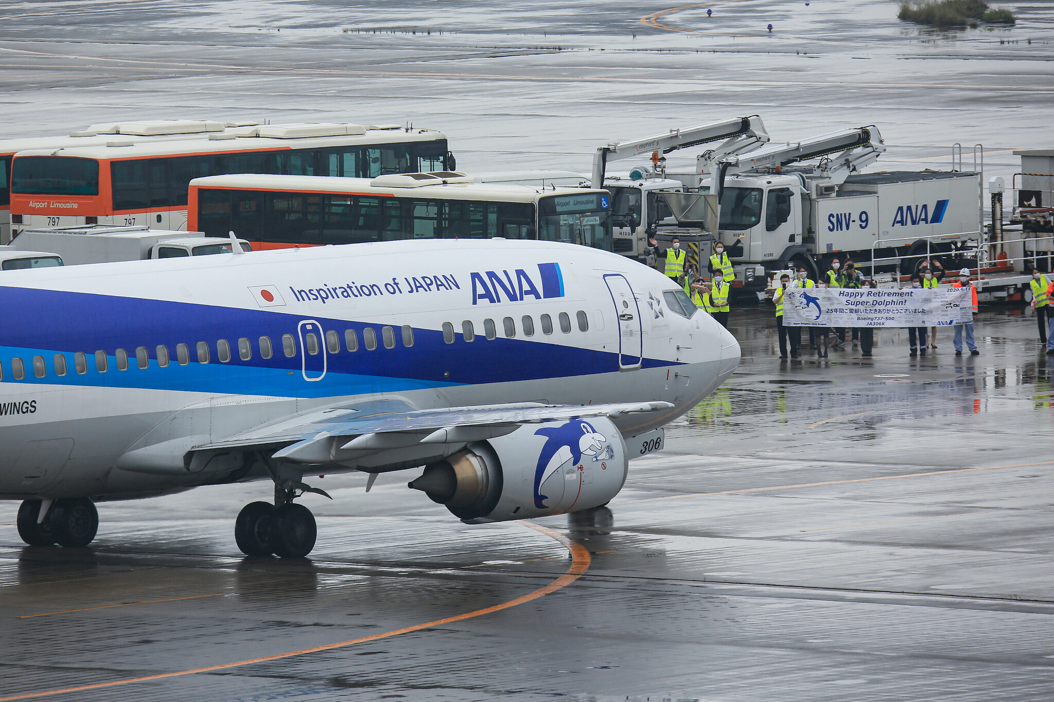 ANA All Nippon Airways Retires 737-500 - Airport Spotting